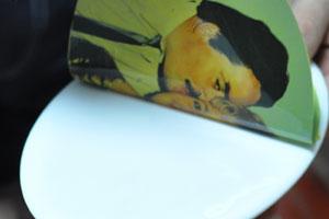 Uslužna štampa nalepnica za fotokeramiku
